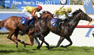 Playing God_04-12-2010_WIN_Ascot_7__21